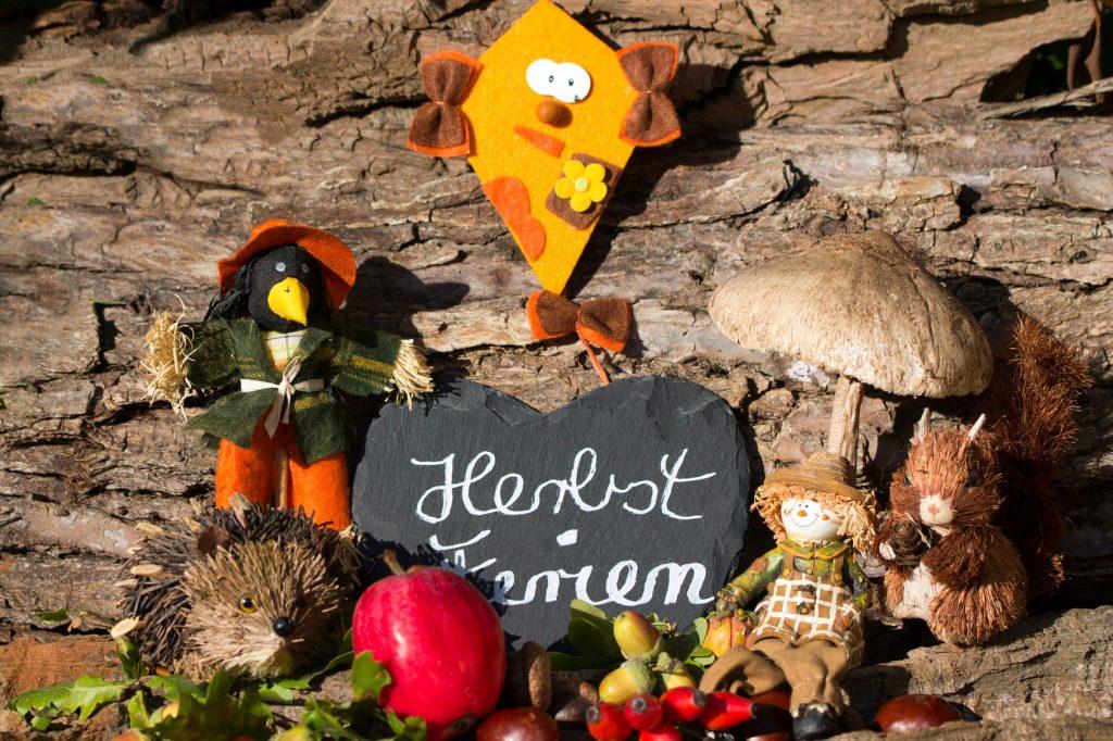 Herbstferien mit Igel,Drache,Eichhörnchen